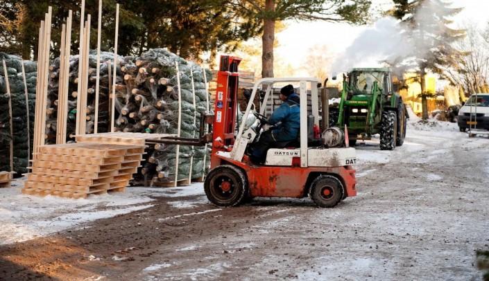 palletering af juletræer